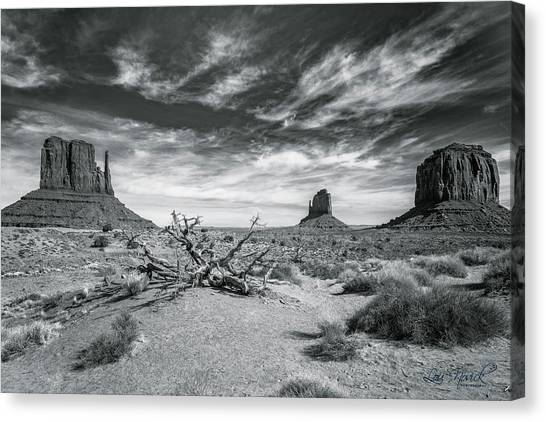 Canvas Print featuring the photograph Monument Valley by Lou Novick