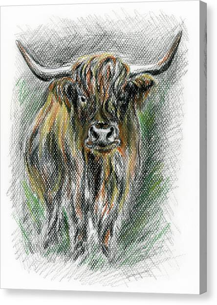 Canvas Print featuring the drawing Moo by MM Anderson