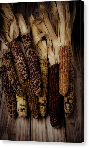 Indian Corn Canvas Print - Moody Indian Corn by Garry Gay