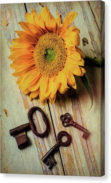 Sunflower Seeds Canvas Print - Moody Sunflower With Keys by Garry Gay