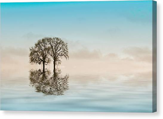 Creative Manipulation Canvas Print - Moody Trees by Jean Noren