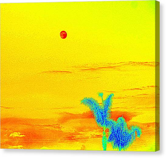 Moon And Two Palms Canvas Print