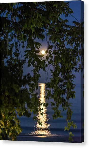 Moon Curtain Canvas Print