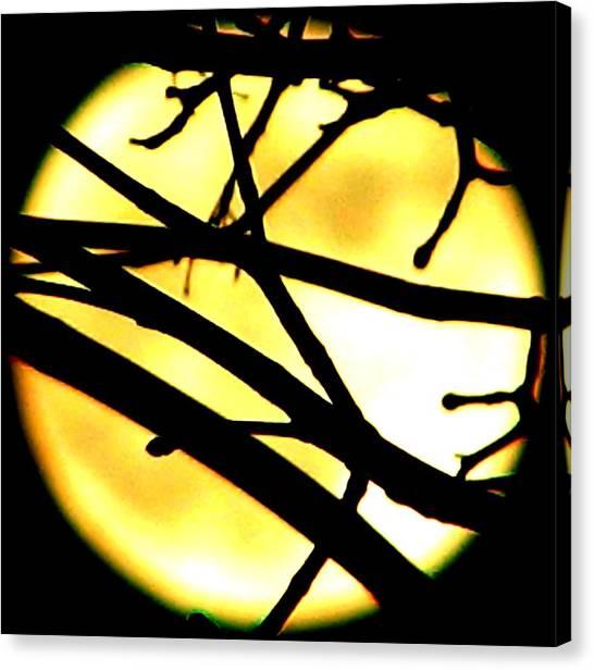 Moon Iv Canvas Print