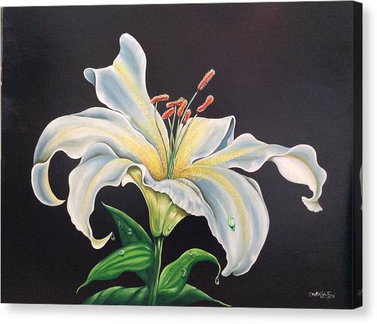 Moon Light Lilly Canvas Print