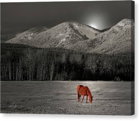 Moon Of The Wild Horse Canvas Print