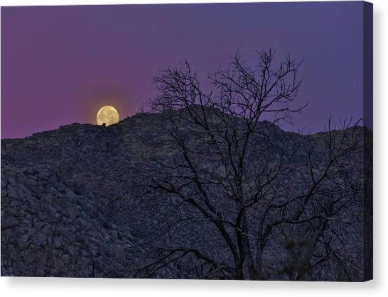 Moon Set At Sunrise Canvas Print