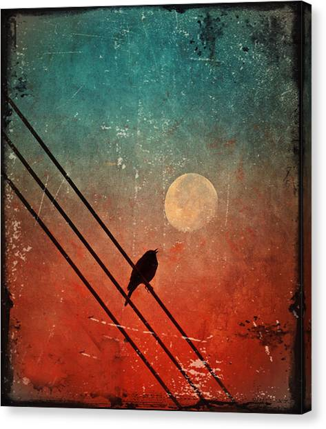Moon Talk Canvas Print