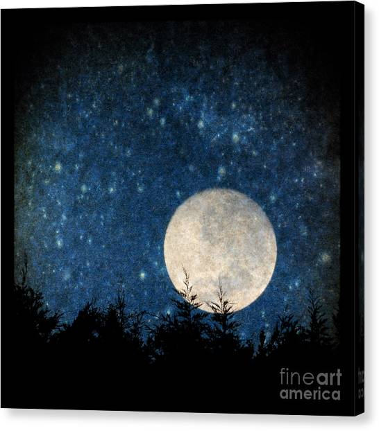 Moon, Tree And Stars Canvas Print