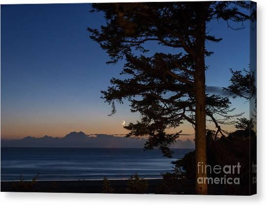 Moonlight At The Beach Canvas Print