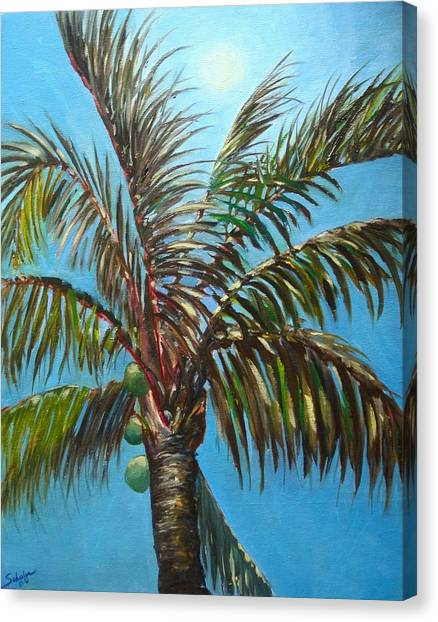Canvas Print - moonlight over the Palm by Charles Schaefer