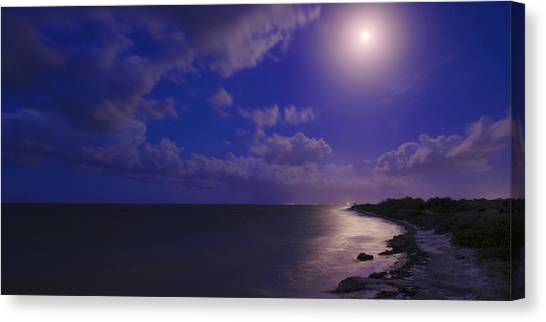 Moon Canvas Print - Moonlight Sonata by Chad Dutson