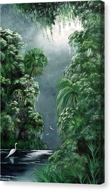 Moonlight  Swamp Canvas Print by Darlene Green