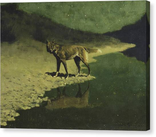 Moonlight, Wolf Canvas Print