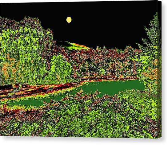 Oyama Canvas Print - Moonlit Kaloya Park by Will Borden