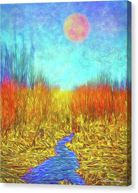 Moonlit Wilderness - Colorado Stream In Boulder County Canvas Print