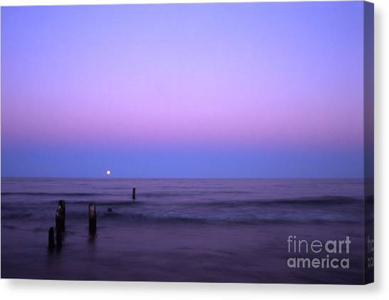 Moonrise Canvas Print by Timothy Johnson