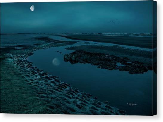 Moonscape 4 Canvas Print