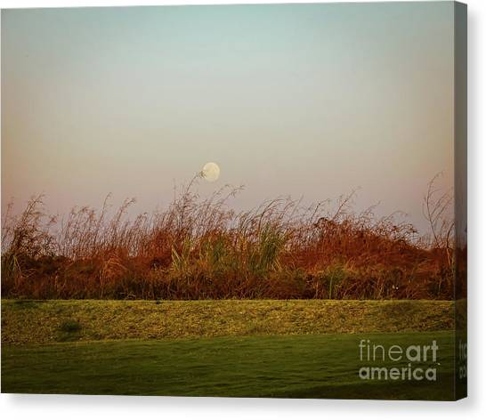 Moonscape Evening Shades Canvas Print