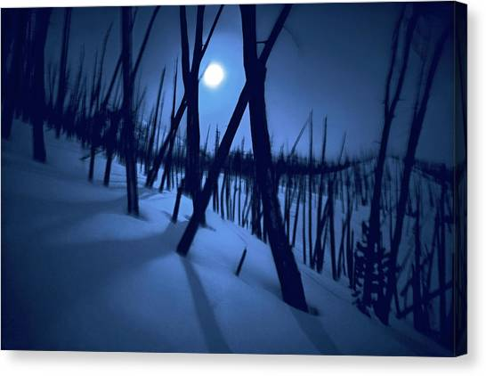 Moonshadows Canvas Print
