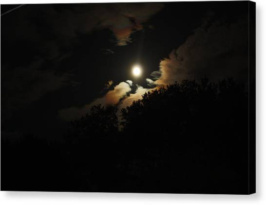 Moonshine Canvas Print by Paula Coley