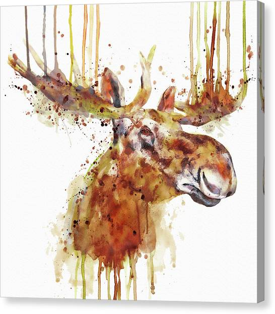 Moose Canvas Print - Moose Head by Marian Voicu