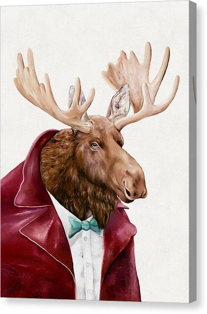 Moose Canvas Print - Moose In Maroon by Animal Crew