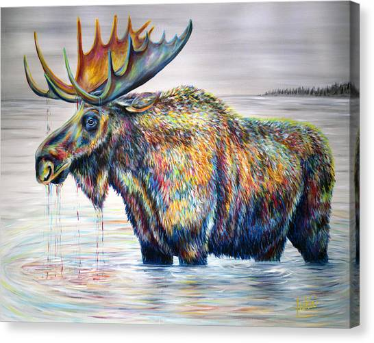 Moose Island Canvas Print