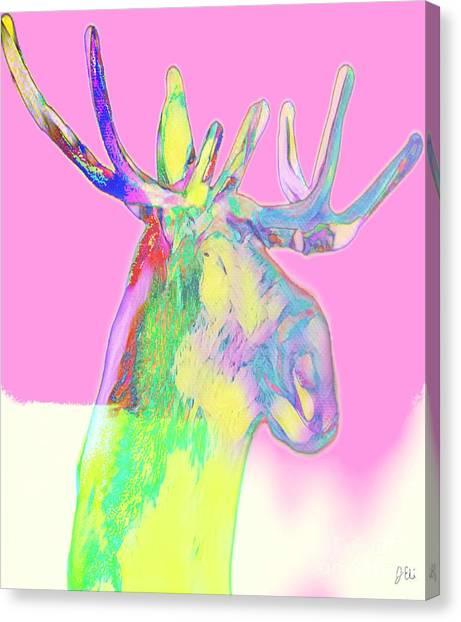 Moosemerized Canvas Print