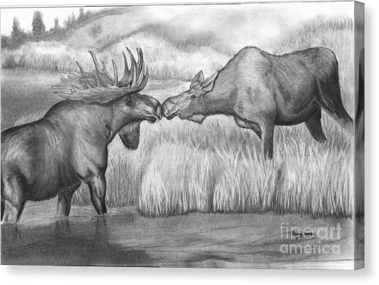 Moose Looking For Love Canvas Print by Russ  Smith