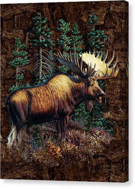 Moose Canvas Print - Moose Vignette by JQ Licensing