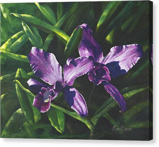 Morada Morning Canvas Print