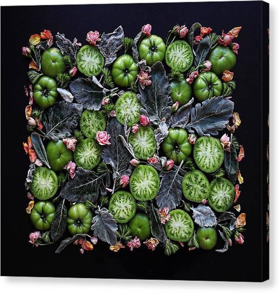 More Green Tomato Art Canvas Print