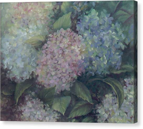 More Hydrangeas Canvas Print