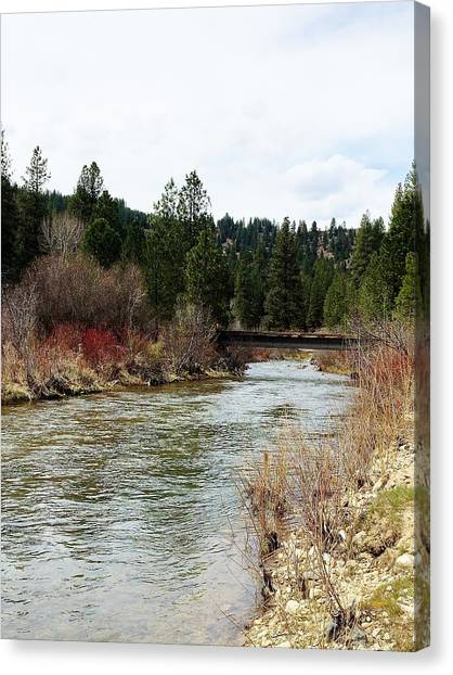 Boise National Forest Canvas Print - Mores Creek Idaho by Sandra M