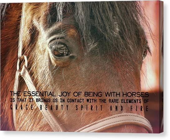 Morgan Horse Quote Canvas Print by JAMART Photography