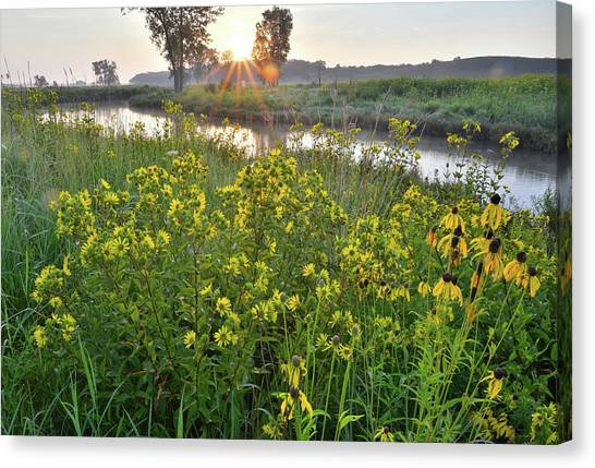 Prairie Sunrises Canvas Print - Morning Along Nippersink Creek In Glacial Park by Ray Mathis