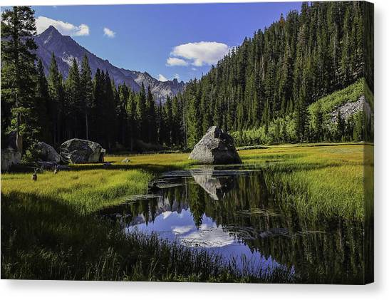 Morning At Grouse Meadow Canvas Print
