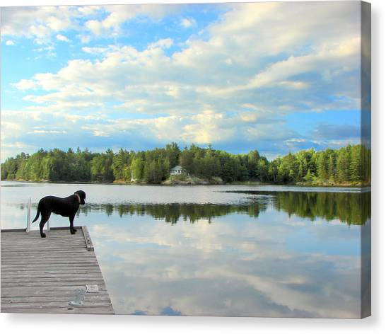 Morning At Pine Lake Canvas Print