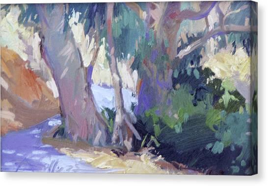Morning Dance - Catalina Island Canvas Print