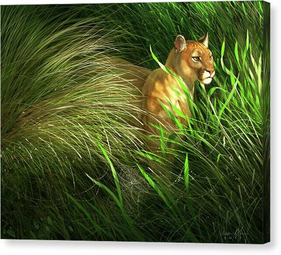Florida Panthers Canvas Print - Morning Dew - Florida Panther by Aaron Blaise
