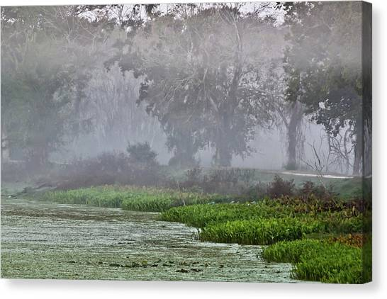 Morning Fog At Brazos Bend Canvas Print