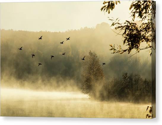 Morning Fog On Haley Pond In Rangeley Maine Canvas Print