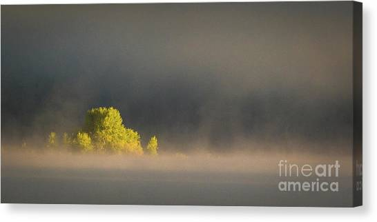 Morning Fog On Jackson Lake Grand Teton National Park  Canvas Print