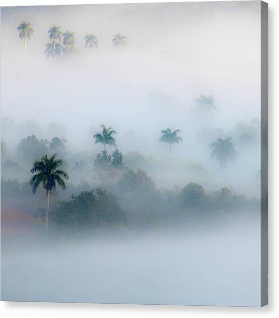 Morning Fog, Vinales Valley Canvas Print