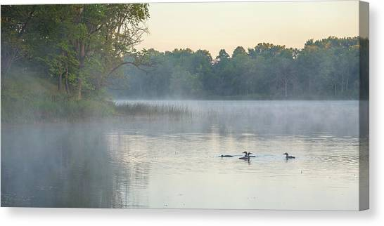 Morning Gathering Canvas Print