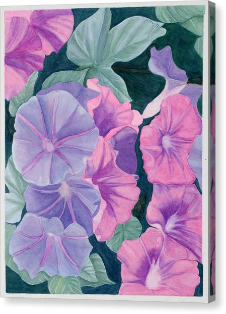 Morning Glories Canvas Print by Barbara Pascal