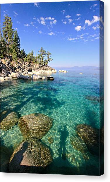Canvas Print featuring the photograph Morning Glory At The Cove by Sean Sarsfield