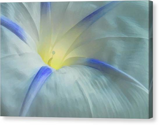 Morning Glory Canvas Print by Gene Sizemore