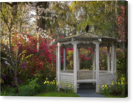 Morning Glow At The Plantations Canvas Print
